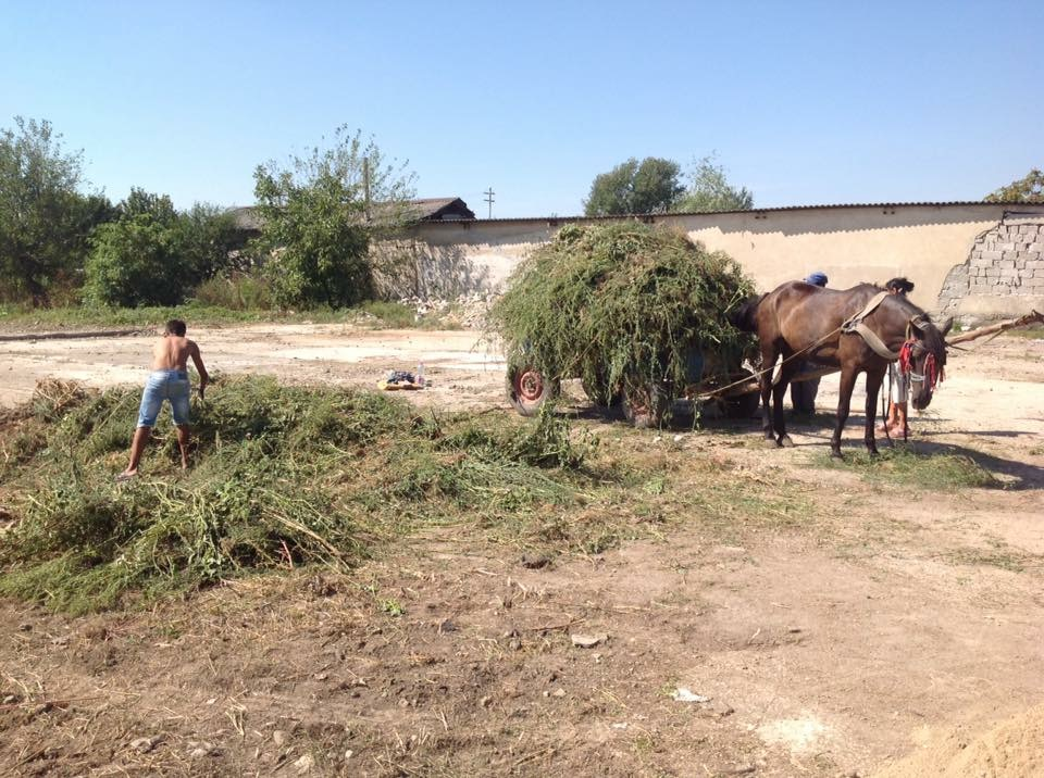 Hilfsprojekt_Caramidari_September_2015_Kinder_Fußballplatz_1
